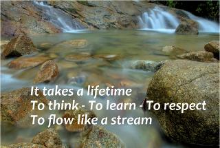 Flow Haiku