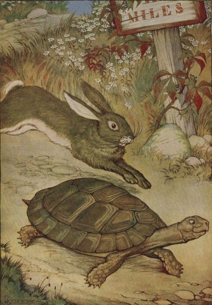 The Tortoise and the Hare race